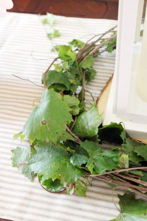 Creating-a-Wreath-with-Fresh-Grapevine   The Everyday Home   www.everydayhomeblog.com