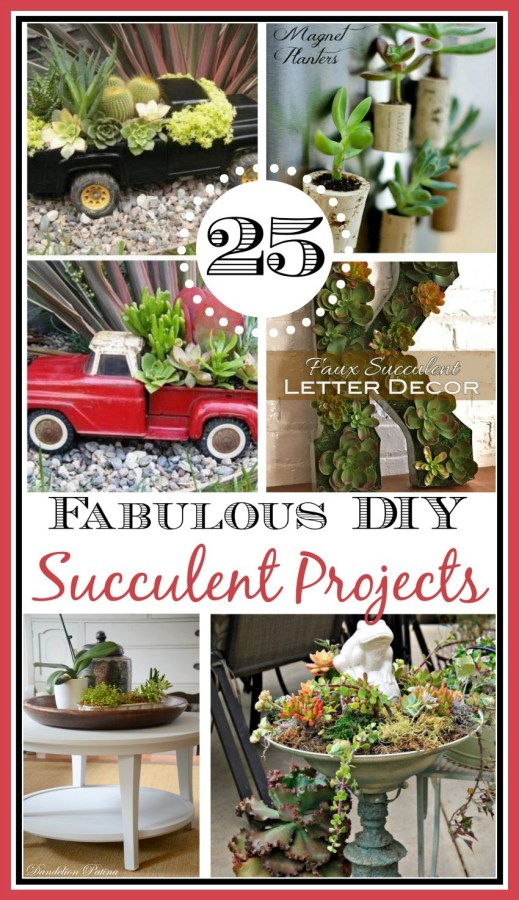 25 Ways to Use Succulents | The Everyday Home | www.everydayhomeblog.com