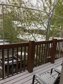 am nächsten Morgen schneite es leicht