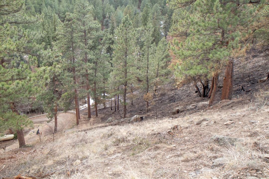Cameron Peak wildfire