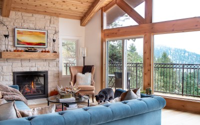 OUR MODERN MOUNTAIN LIVING ROOM