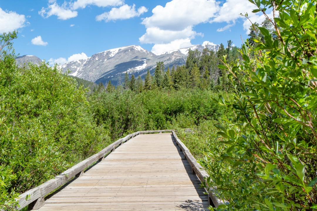 Beaver Ponds Boardwalk in Rocky Mountain National Park