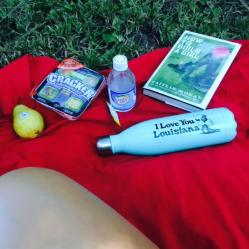 picniccp1