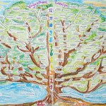 vrijeschool boom veelgestelde vragen