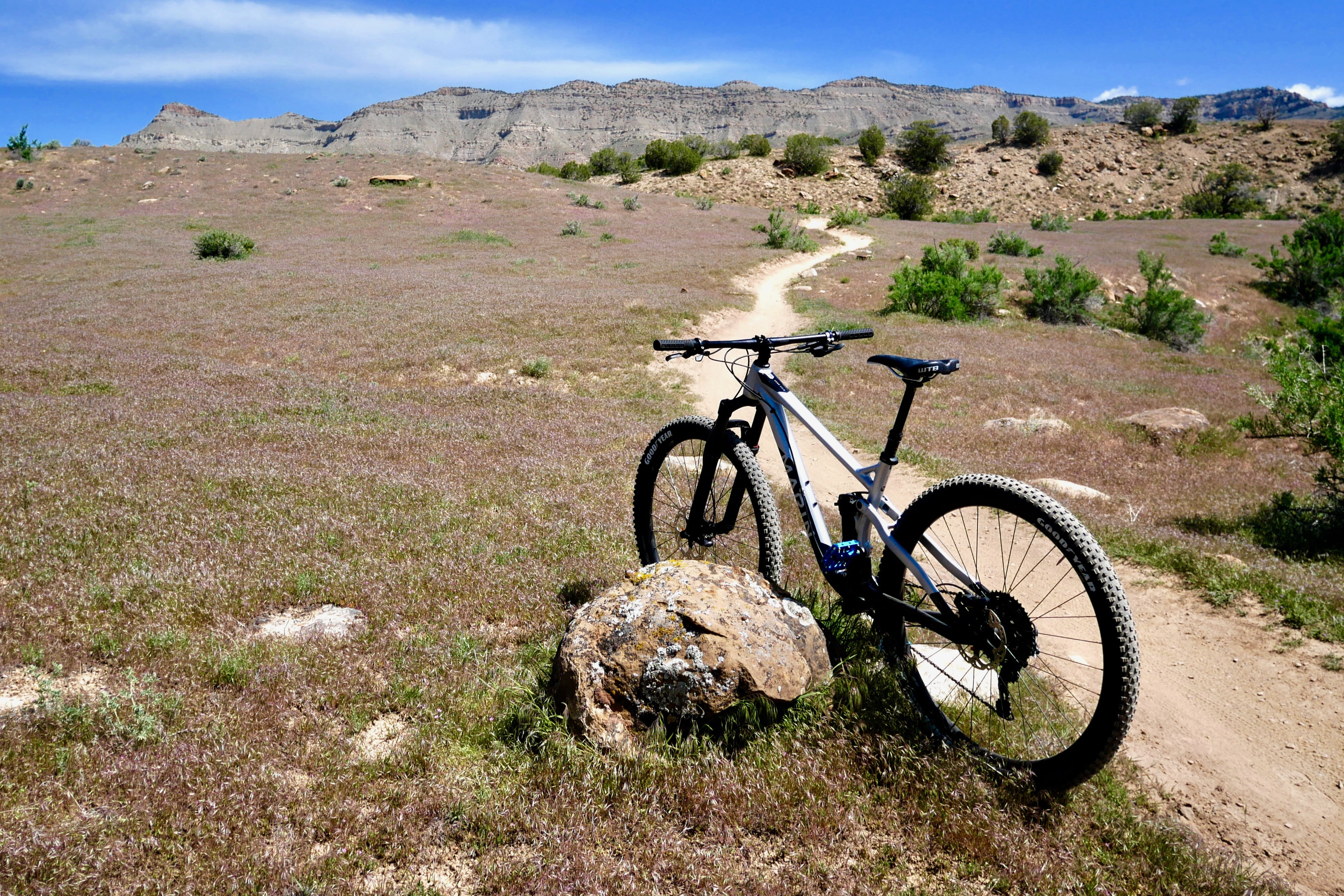 Marin Rift Zone Ride Review