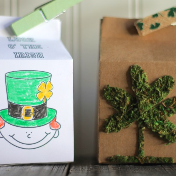 St. Patrick's Day Leprechaun House Sizzix Inspiration Everyday Party Magazine