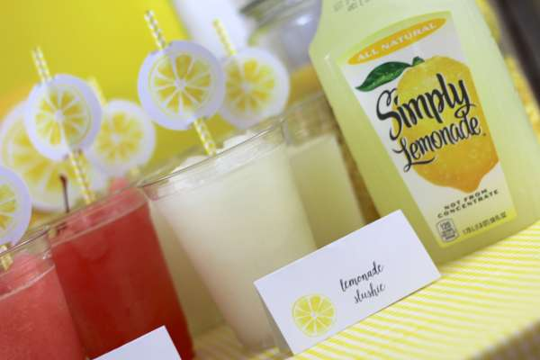 Everyday Party Magazine Lemonade Stand Party