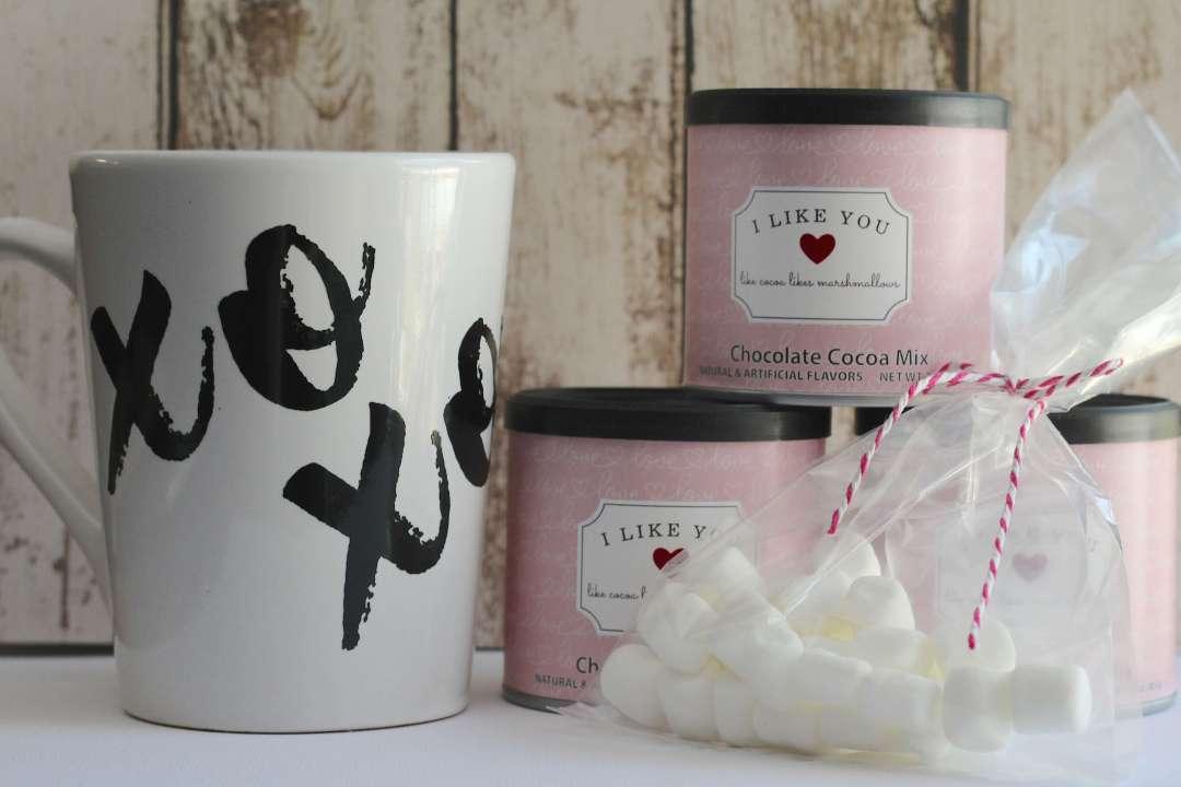 Everyday Party Magazine I Like You Like Cocoa Likes Marshmallows Valentine's Day Gift