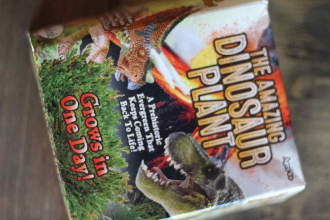 STEM, STEAM, Dinosaur, Megalodon, Shark, Plants, Oriental Trading Company, Everyday Party Magazine