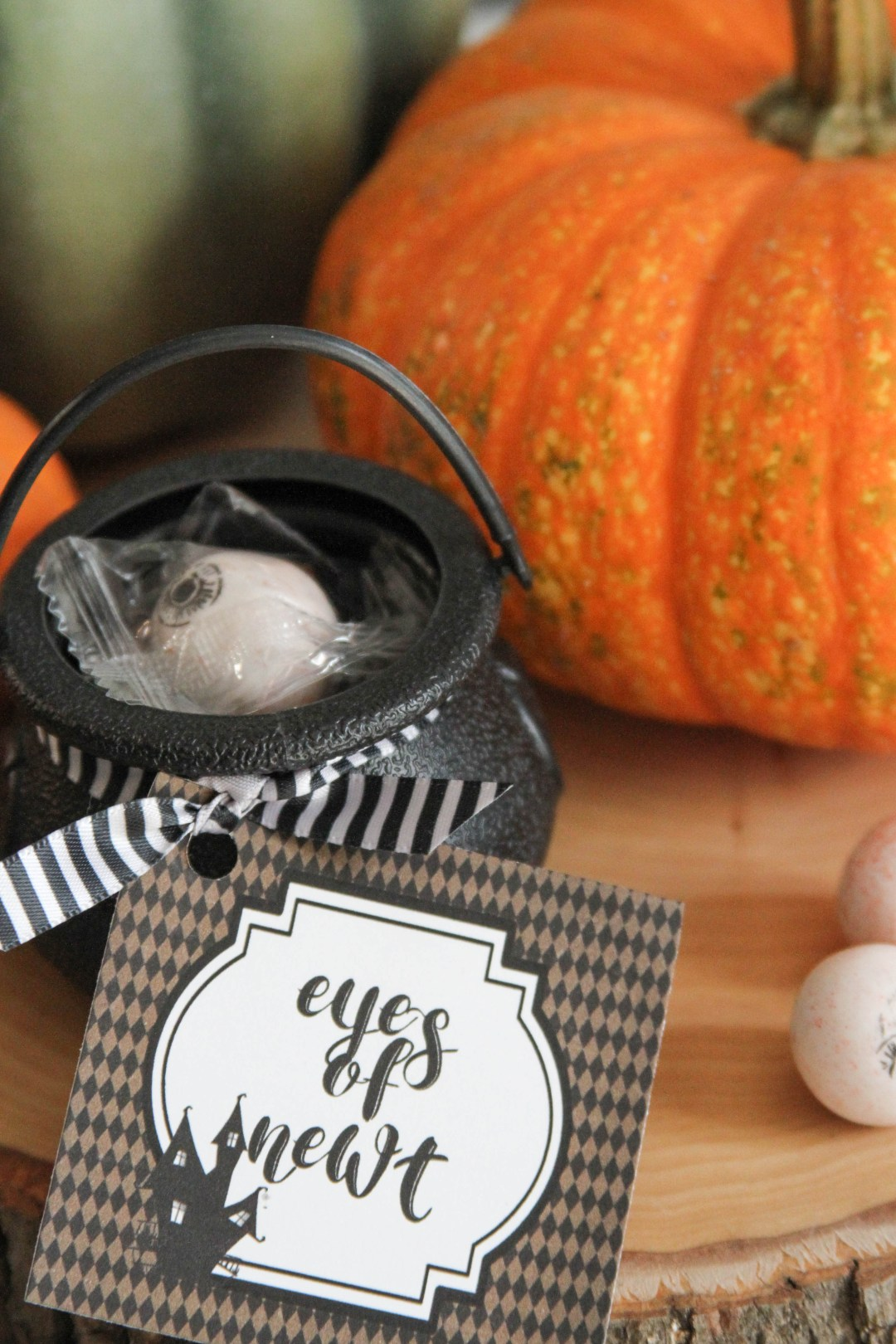 Everyday Party Magazine Eyes of Newt Halloween Favor