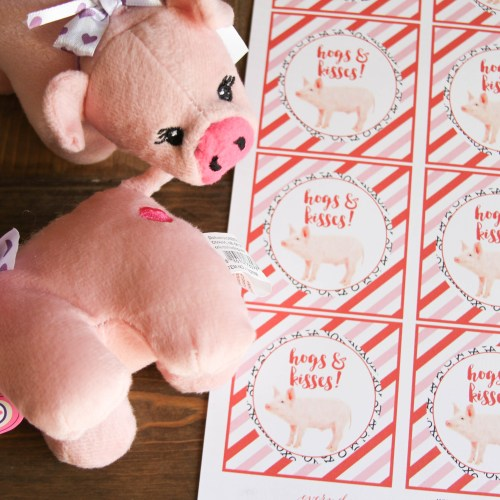 Everyday Party Magazine Hogs and Kisses Valentine's Day Treat