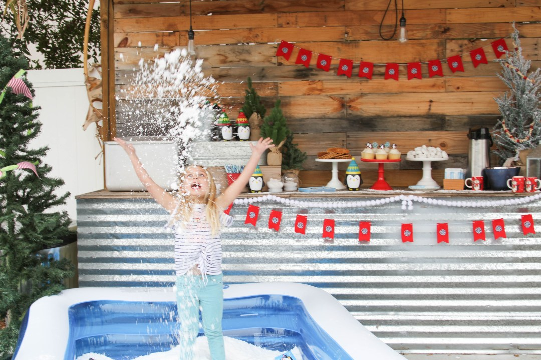 Everyday Party Magazine Winter Wonderland Party