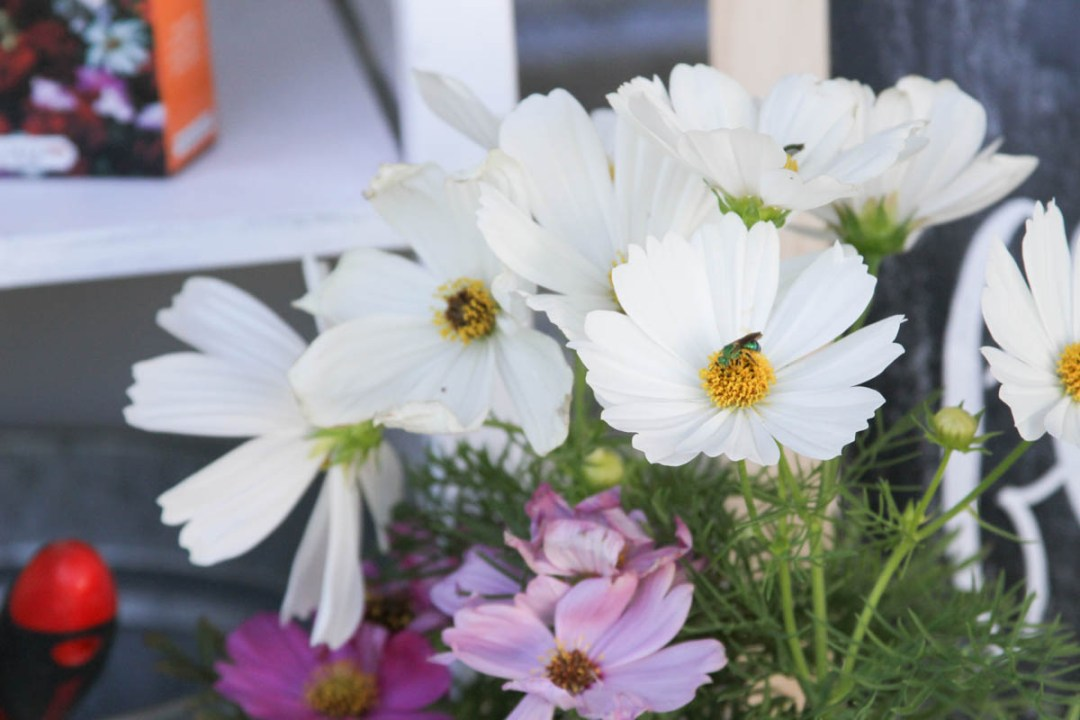 Everyday Party Magazine Garden Party #Spring #Garden #Flowers #Party