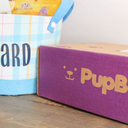 Everyday Party Magazine Easter Basket for the Dog #PetCo #EasterBasket #DIY