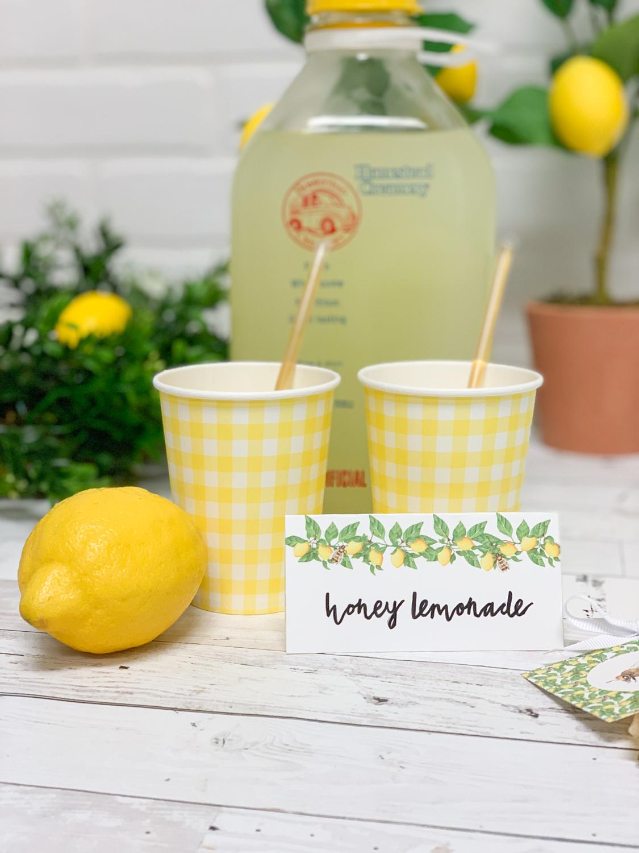 Lemons Lemonade Food Tent