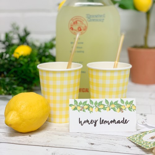 Lemons Lemonade Food Tent