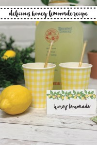Lemonade Food Tent Lemons Gingham Cups