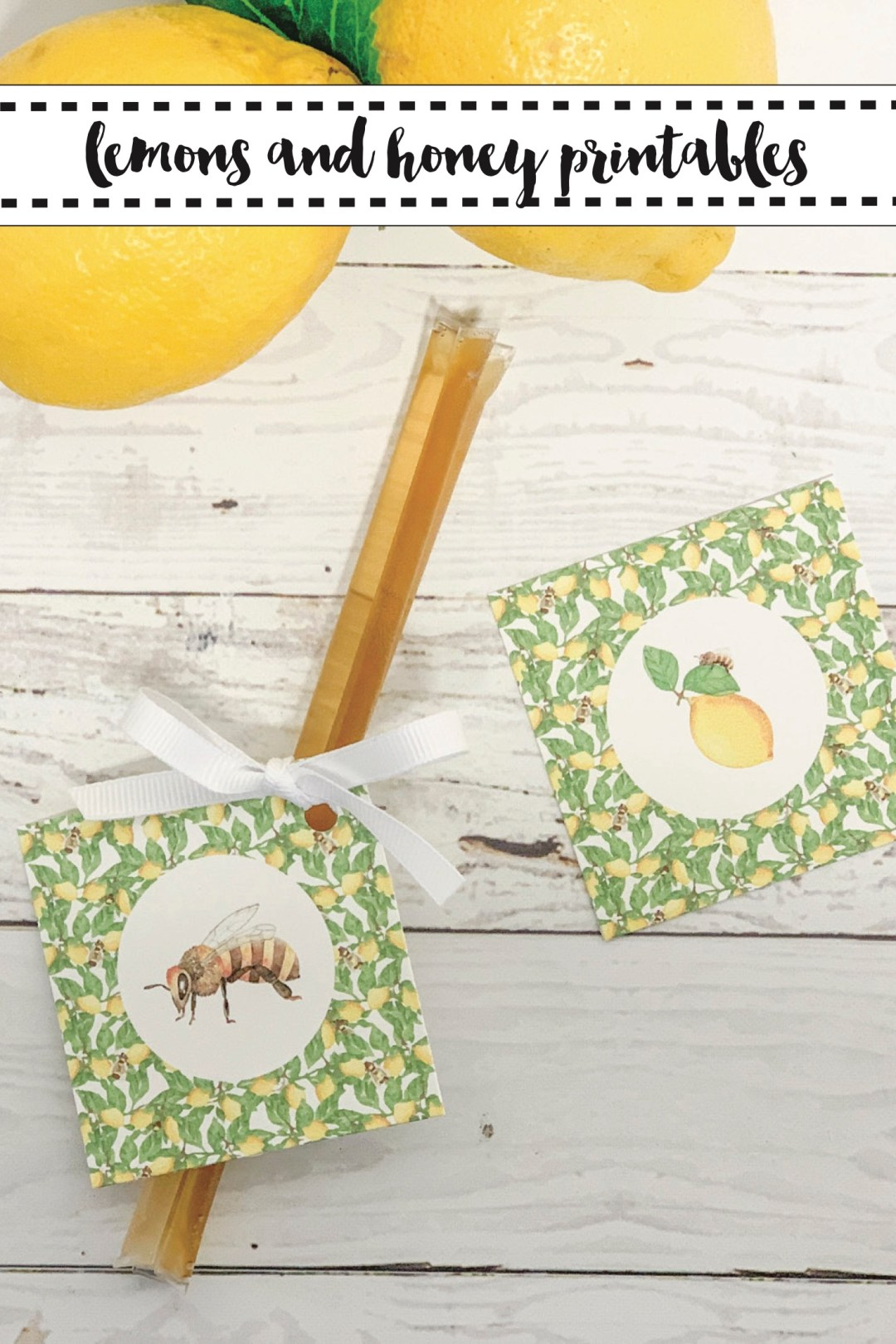 Sweet Honey Bee Party Favors