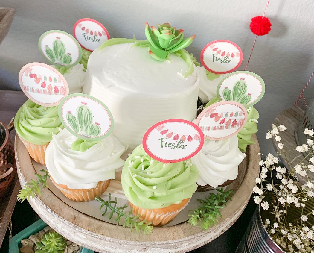Cactus Cake and Cupcakes