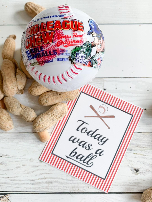 Baseball Party Tag Baseball Peanuts
