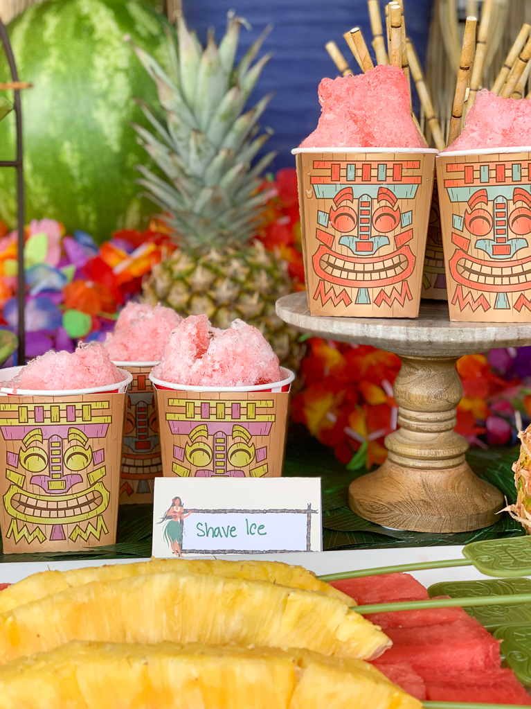 Hawaiian Shave Ice Tropical Fruit
