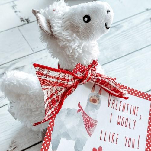 Plush Llama Valentine