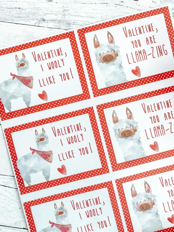 Llama Valentine's Day Cards