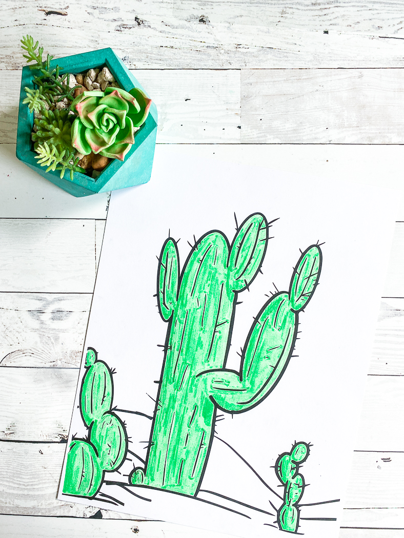 Adult Coloring Pages Free Printable Design Picture Saguaro Cactus ... | 1050x788