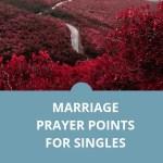 نقاط صلاة الزواج للعزاب