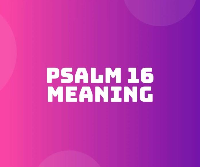PSALM 16 ਆਇਤ ਦੁਆਰਾ ਆਇਤ ਦਾ ਮਤਲਬ ਹੈ