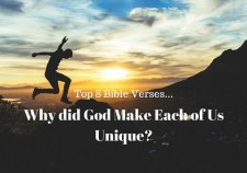 op 8 Bible Verses-Why did God make each of us unique