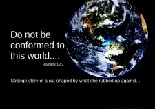 Shaped by the world