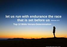 Top 12 Bible verses-determination