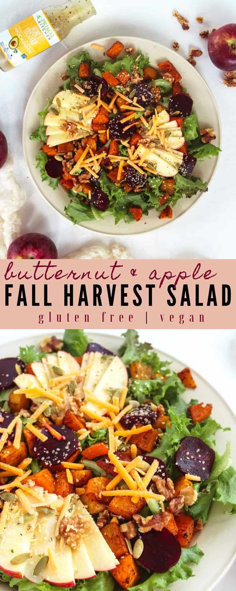 This Butternut Squash & Apple Fall Harvest Salad will definitely put you in the mood for Fall! Made with seasonal produce, this salad is vegan & gluten free