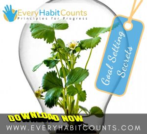 Every-Habit-Counts-Goal-Setting-Secrets (68)