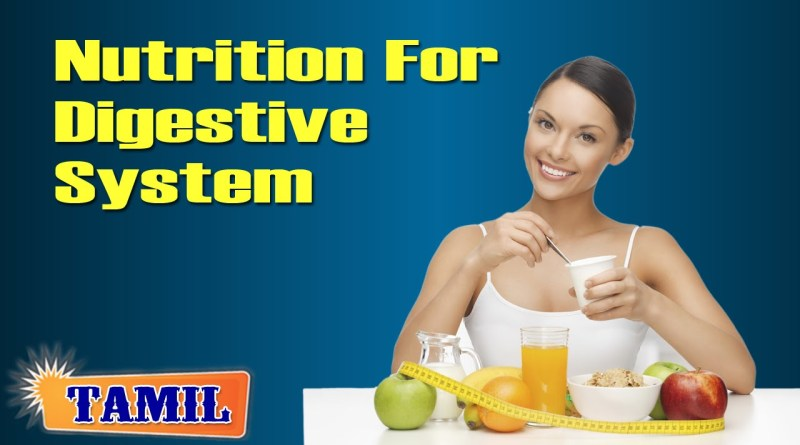 Nutritional Management For Digestive System | Yoga Tutorial in Tamil
