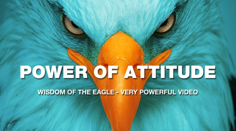 An Eagle Story - The Power of Attitude - Great Motivational Video