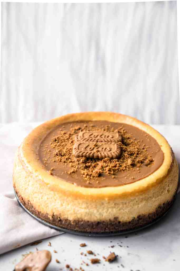 A whole lotus biscoff cheesecake on a plate with a white background