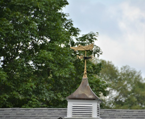 Weekend Weathervanes: I Spy a Grasshopper