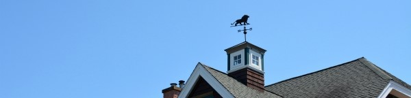 Weekend Weathervanes: The Lion Roared in Charlestown, Rhode Island