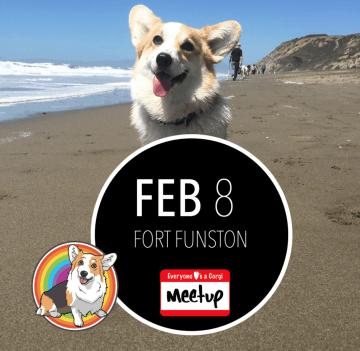 Fort Funston Corgi Meetup