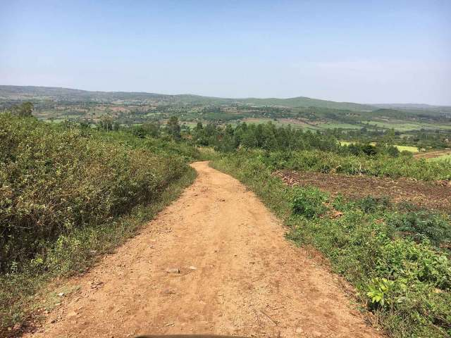 Beautiful green fields surrounding the rocky road leading to Miruya Primary School