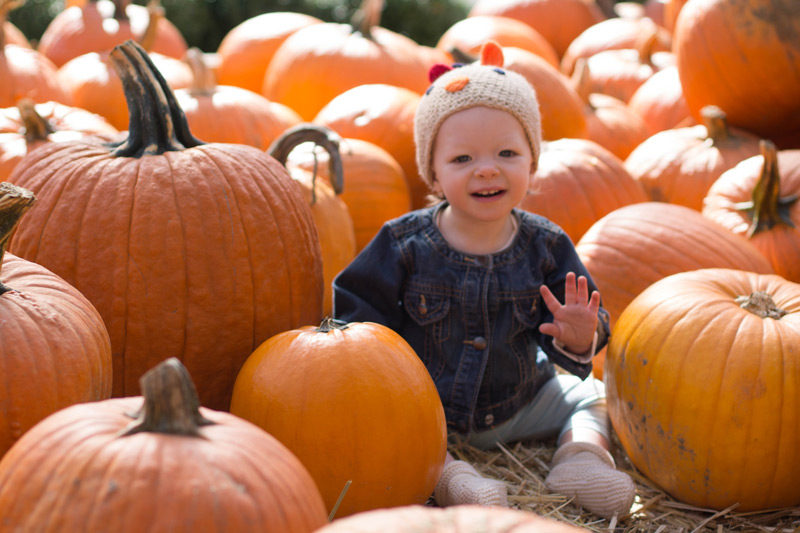 baby waving in an east coast pumpkin patch