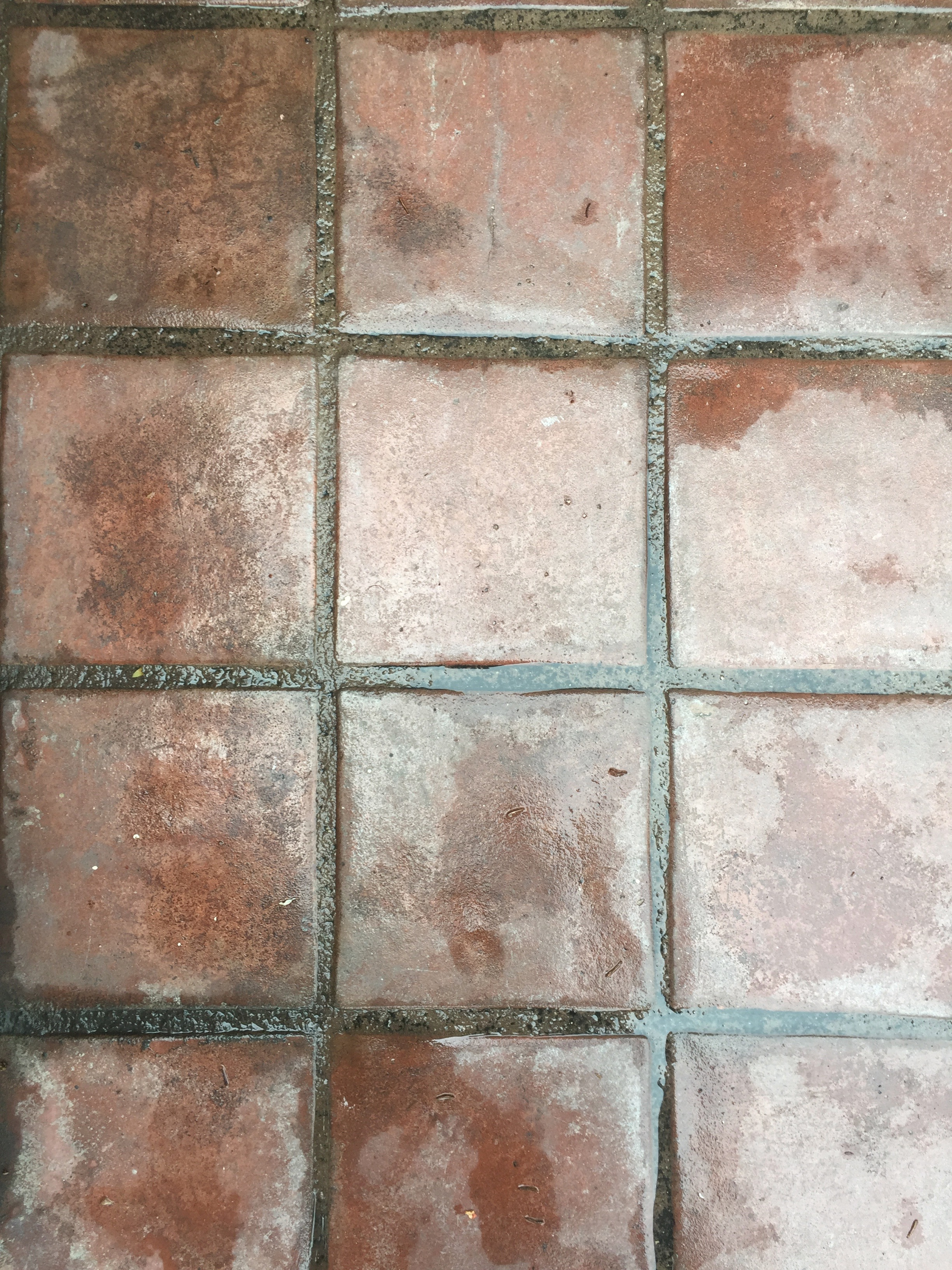 wet red spanish style tiles free stock