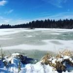 Marathon Training Update: Winter Blues