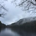 Race Recap: 5 Peaks Alice Lake 2017
