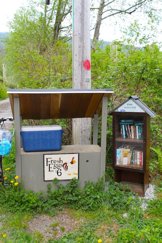 Fresh eggs and fresh books on Burton Road.