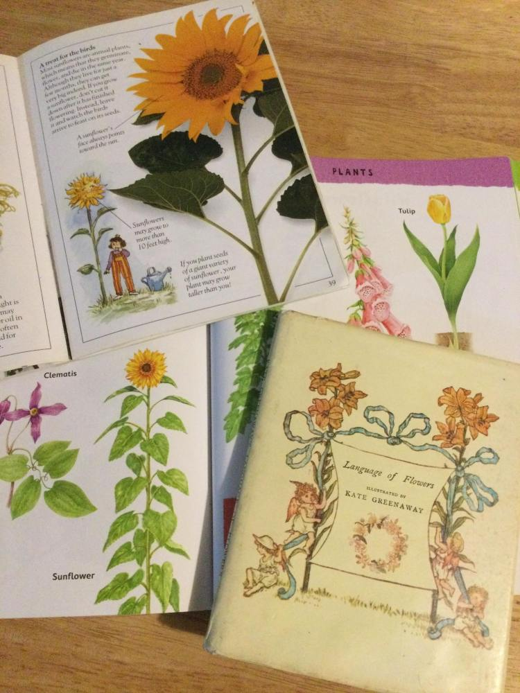 Pages of books with sunflower images