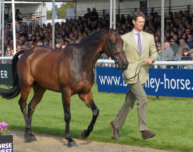 William Fox-Pitt with Fernhill Pimms image credit Mike Bain