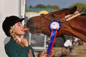 horse addiction
